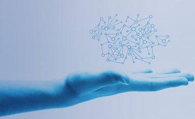 Sektor 3-0 BLOG Homo Immunologicus - jak kształtować kompetencje człowieka odpornego